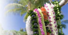レイ HAWAII(ハワイ)